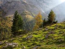 Solstråle in i den magiska bergdalen på nedgången Royaltyfria Bilder