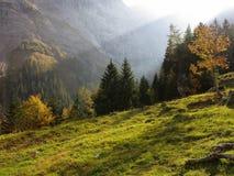 Solstråle som skiner in i den magiska alpina dalen Arkivfoton