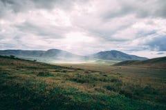 Solstråle till och med moln på gräsfält royaltyfri bild