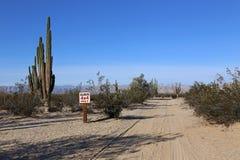 Soltanto 4x4 nel deserto della Bassa California Fotografia Stock Libera da Diritti