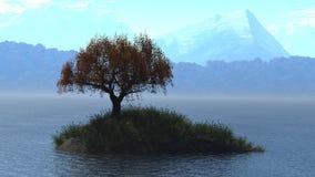 Soltary tree Royalty Free Stock Image