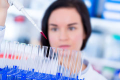 Solución que mide con una pipeta profesional de la ciencia de las mujeres jovenes en el tubo de ensayo de cristal Imágenes de archivo libres de regalías