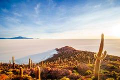 Soluppgång över öincahuasi vid den salta sjön Uyuni i Bolivia arkivfoton
