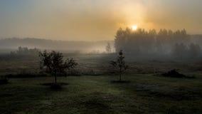 Soluppgång över de dimmiga fälten arkivfoton