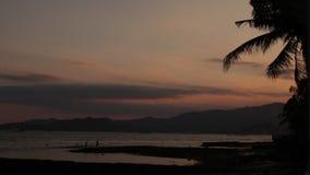 Soluppgång över den tropiska östranden och palmträd, Bali ö stock video