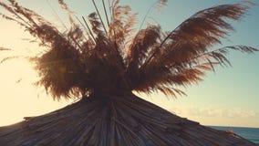 Soluppgång över den tropiska stranden och slags solskydd lager videofilmer