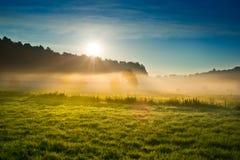 Soluppgång över det dimmiga fältet arkivfoto