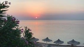 Soluppgång över det lugna havet, solig väg stock video