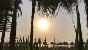 Soluppgång över det lugna havet, solig väg arkivfilmer