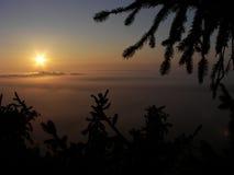 Soluppgång över dimma Royaltyfri Foto