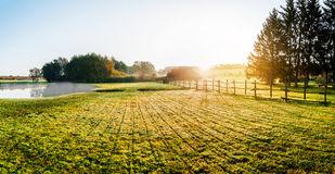 Soluppgång över dimmig grässlätt Royaltyfri Foto