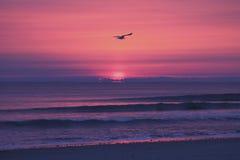 Soluppgång över Duxbury, Massachusetts Arkivbilder