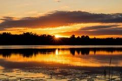 Soluppgång över en lugna ö sjö Fotografering för Bildbyråer