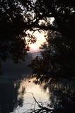 Soluppgång över ett damm Royaltyfri Bild