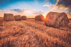 Soluppgång över ett fält av höbaler Arkivfoto