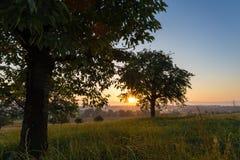 Soluppgång över ett stillsamt landskap med träd Fotografering för Bildbyråer