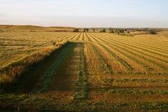 Soluppgång över Hay Field arkivfoto