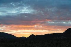 Soluppgång över Joshua Tree National Park Royaltyfria Bilder
