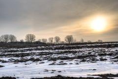 Soluppgång över kargt fält Royaltyfria Bilder