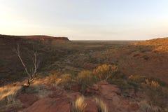 Soluppgång över konungkanjonnationalparken - Australien Royaltyfri Foto