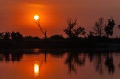 Soluppgång över sjön med reflexion av kala träd i vattnet Arkivbilder