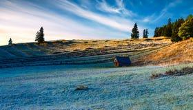 Soluppgång över terrasserade fält royaltyfria foton