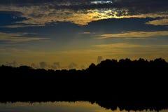 Soluppgång över våtmarkerna Royaltyfria Bilder