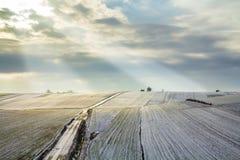 Soluppgång över vintergräsplanfält lantlig liggande royaltyfria foton