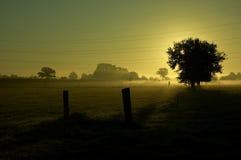 soluppgång 2 Fotografering för Bildbyråer