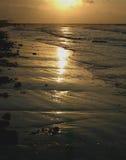 soluppgång 4461 Arkivfoton