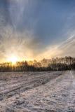 Soluppgång bak linje av träd Arkivbild
