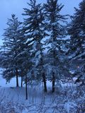 Soluppgång efter en snöstorm Fotografering för Bildbyråer
