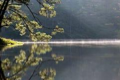 Soluppgång eller gryning i sjön på morgonen Royaltyfria Bilder