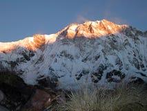 soluppgång för annapurnaH nepal Royaltyfri Fotografi