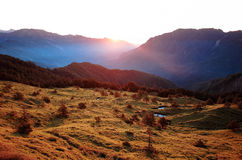 Soluppgång för gräsfält Arkivfoton