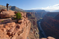 Soluppgång för grand CanyonToroweap punkt Arkivfoton