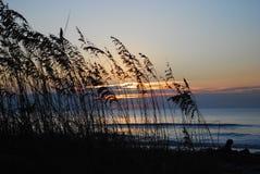 soluppgång för jaktösc Royaltyfri Foto