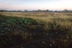 Soluppgång för reserv för Midewin medborgareTallgrass prärie fotografering för bildbyråer