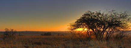 soluppgång för rievlei 3 Arkivbilder