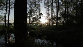 Soluppgång från mörk morgonskog nära dammet stock video