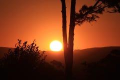 Soluppgång från mountaimsna Fotografering för Bildbyråer
