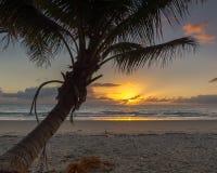 Soluppgång fyra mil strand, Port Douglas, QLD, Australien Arkivfoton