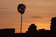 Soluppgång i angkorwat Royaltyfri Fotografi