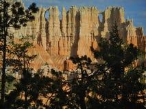 Soluppgång i Bryce Canyon National Park. arkivfoton