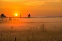 Soluppgång i den dimmiga morgonen royaltyfria bilder