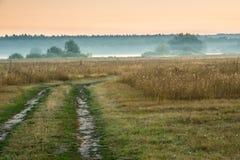 Soluppgång i den dimmiga morgonen arkivbild