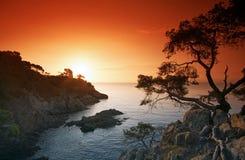 Soluppgång i den franska riviera kusten royaltyfri foto
