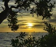 Soluppgång i den Sanibel ön Arkivfoto