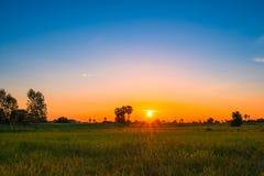 Soluppgång i fält av Thailand Fotografering för Bildbyråer