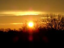 Soluppgång i höst Royaltyfri Bild